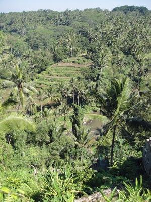 20110703Sayan2