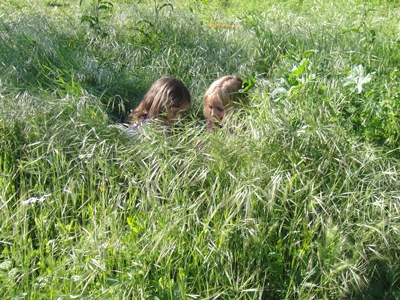 20120504Gras